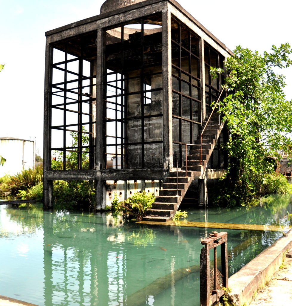 Ancient Sugar Mill at Hampden Estate